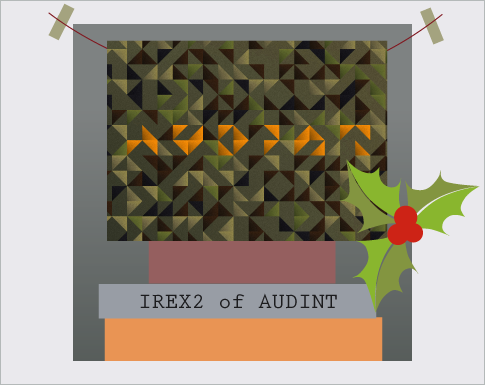 IREX2 of AUDINT
