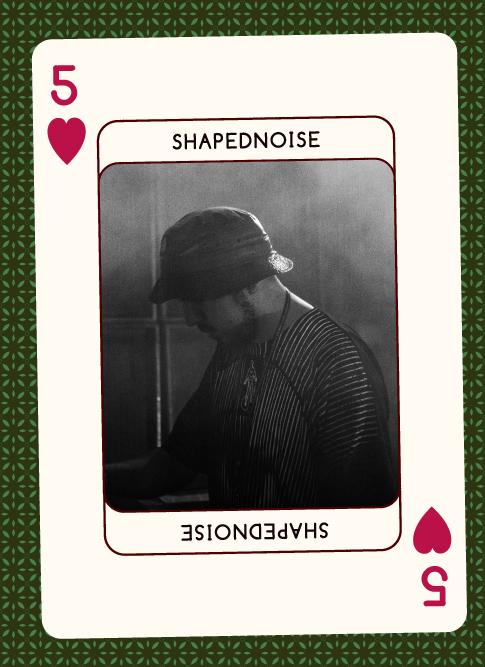 Shapednoise 2017