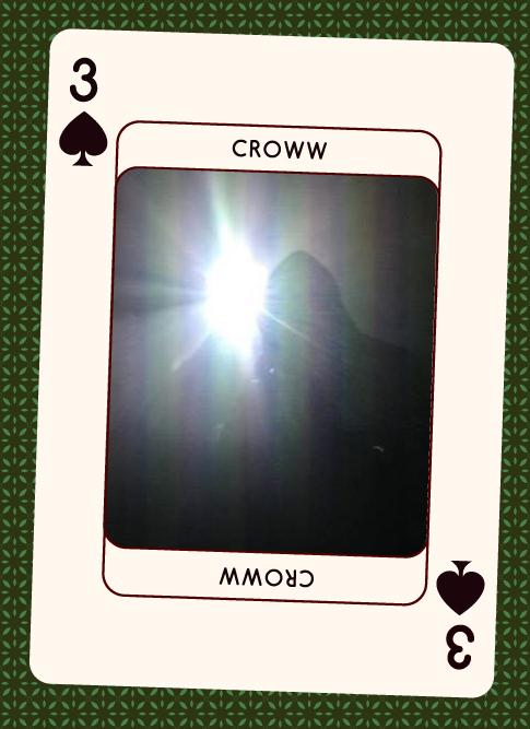 Croww 2017