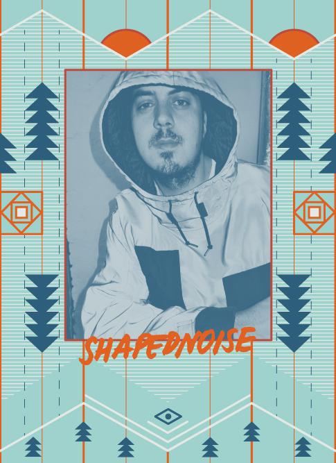 Shapednoise 2018