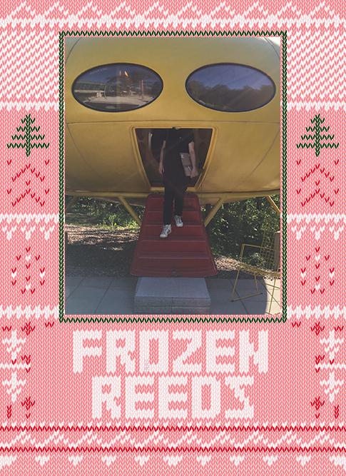 Frozen Reeds 2019