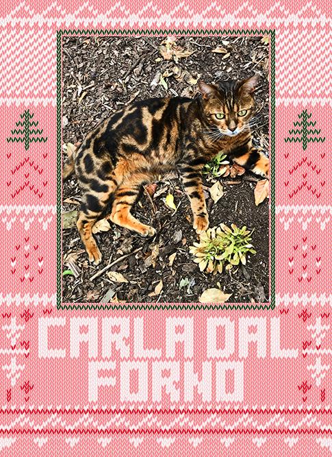 Carla dal Forno 2019