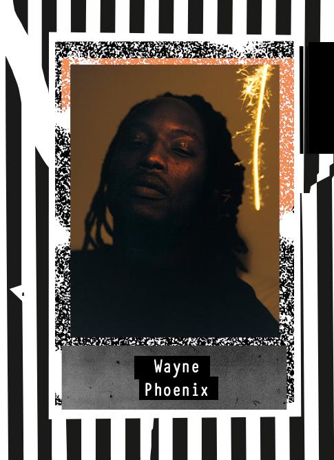 Wayne Phoenix 2020