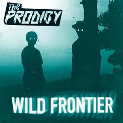prodigy-smack-my-bitch-up-album