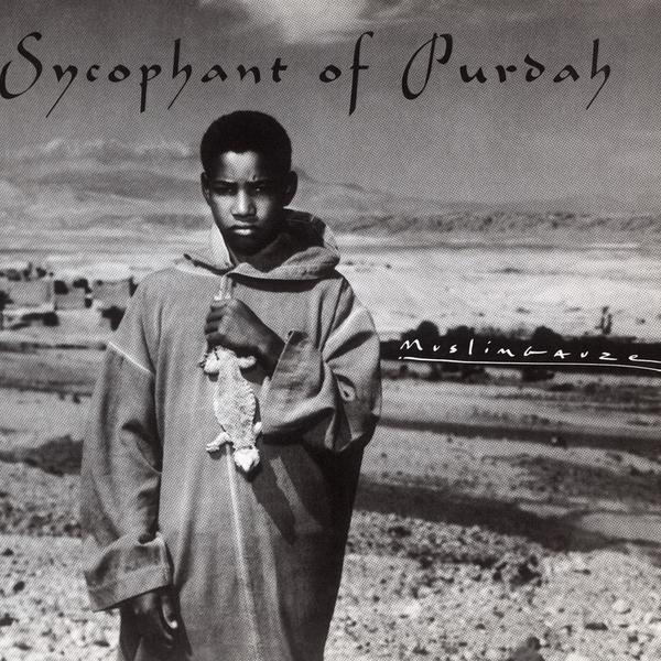 Muslim sycophantofpurdah