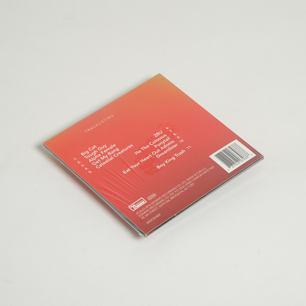 Boyking cd deluxe back