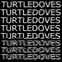 Turtledoves square art