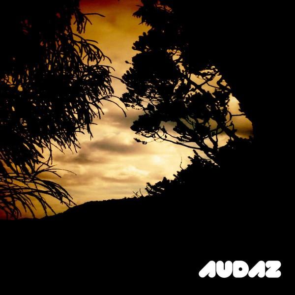 Audazdig122