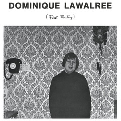 Dominique lawalree first meeting
