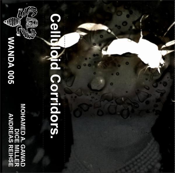 Wanda005 cover