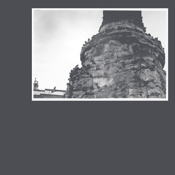 191018916206