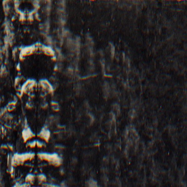 5055869524858 t3 image