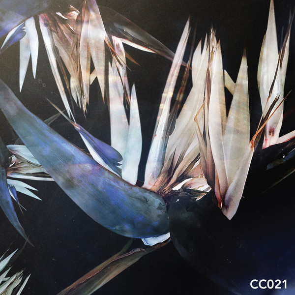 Cc021
