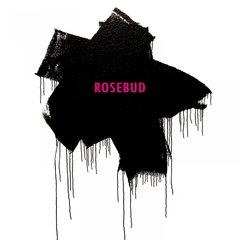 Bernocchis rosebud mit fm einheit