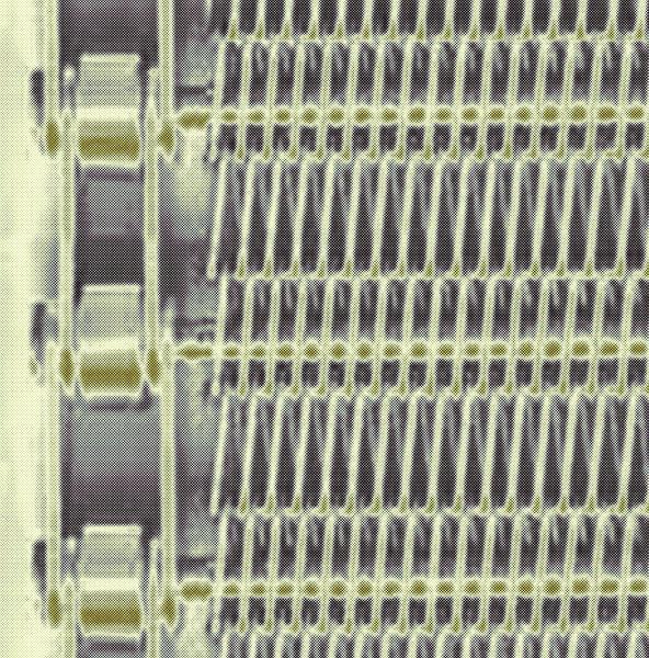 67ef5952 e36c 478c bcf0 a6cd4fb34bbb