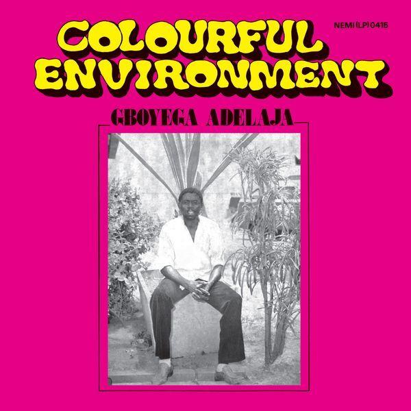 Gboyegaadelaja colourfulenvironment