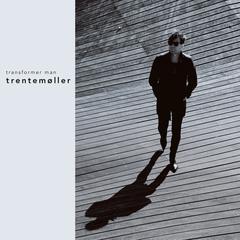 Trentem 248 Ller Shades Of Marble Remixes Trentemoller
