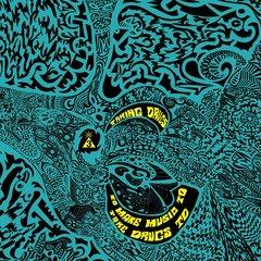 Spacemen 3 taking drugs orbit061lp 1024x1024