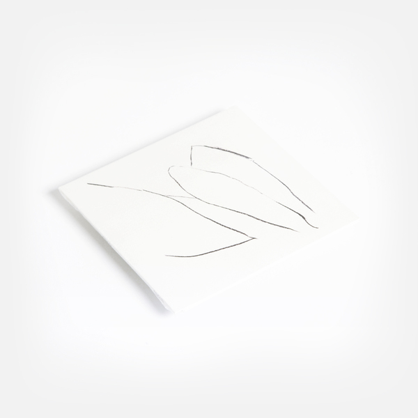 Voicesoftheair cd f