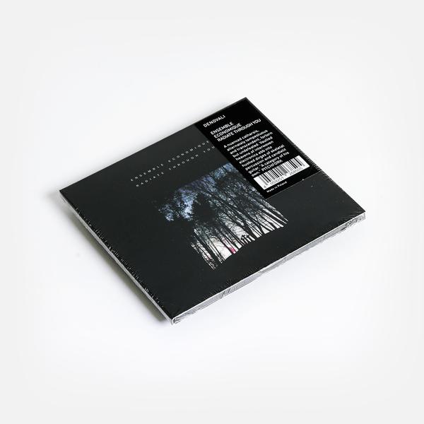Ensembleeconomique cd f