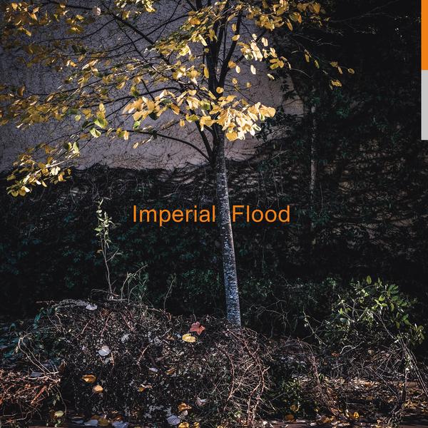 Difflp003 cover