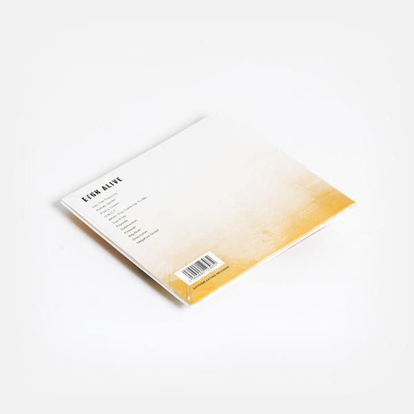 Sleafordmods cd b