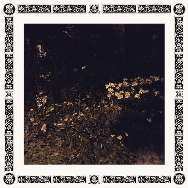 Sarah davachi pale bloom