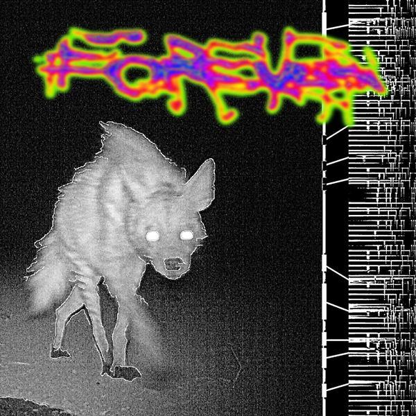 5056321603005 t34 image