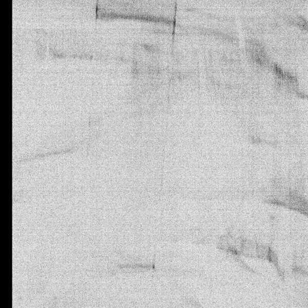 Rm447 werner dafeldecker parallel darks
