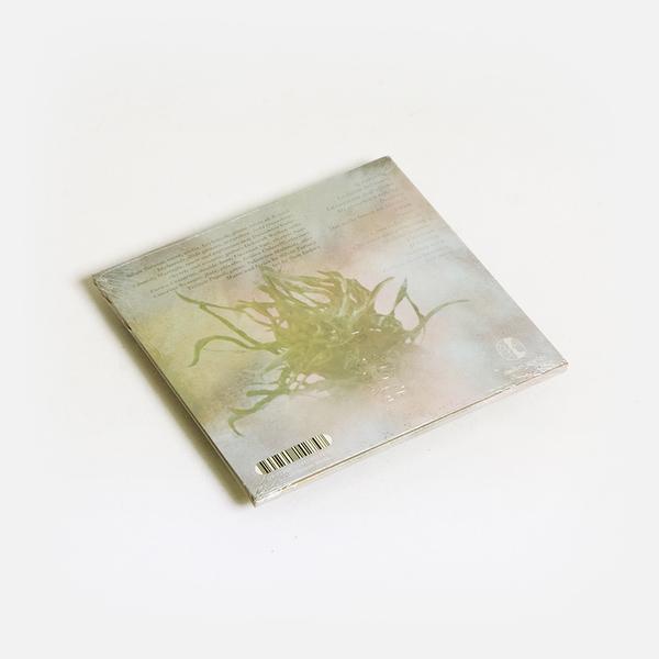 Silviat cd b
