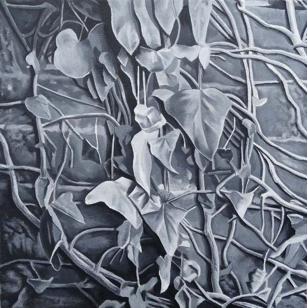 Walled garden cover