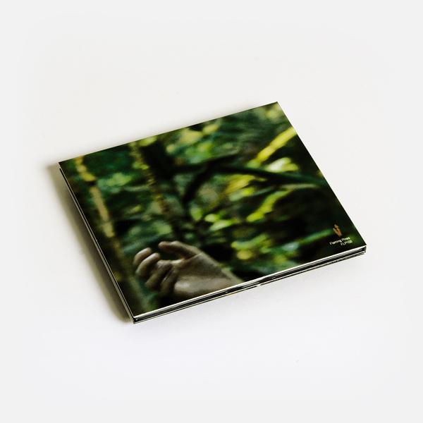 Amazonian b
