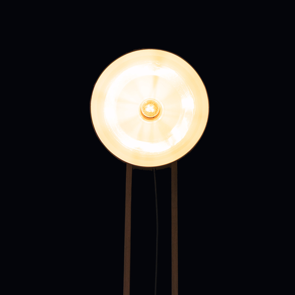 196006166816