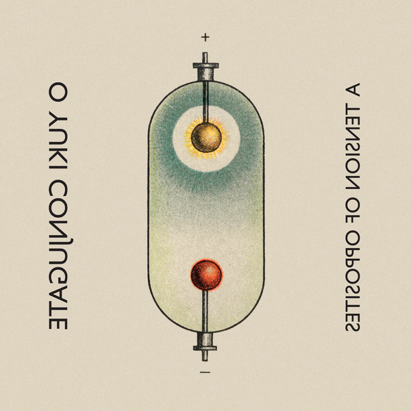 Oyc ltd 5 cover