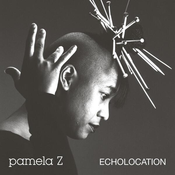 Pamela z artwork